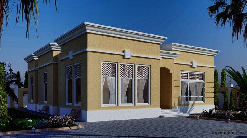 مخطط بيت عصري طابق واحد من برنامج الشيخ زايد 2 غرفة نوم 289  متر مربع